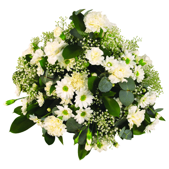 Posy Arrangement - FL009
