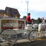 Feltham-White-Horse-Drawn-Funeral-150x150.jpg