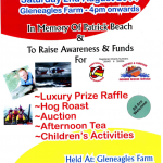 Charity Fun Day In Memory of Patrick Beach