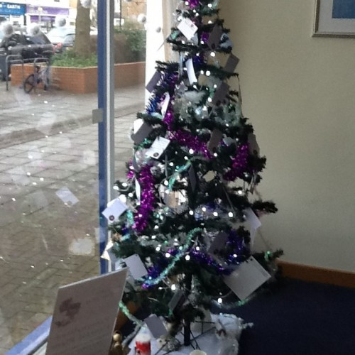 Remembrance Christmas Tree at Lodge Brothers Molesey