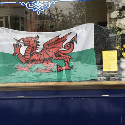 Ealing Branch Fly the Flag for St David's Day