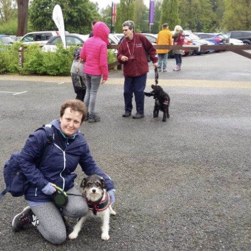 Hearing Dog for the Deaf 'Nell' Walks for Charity