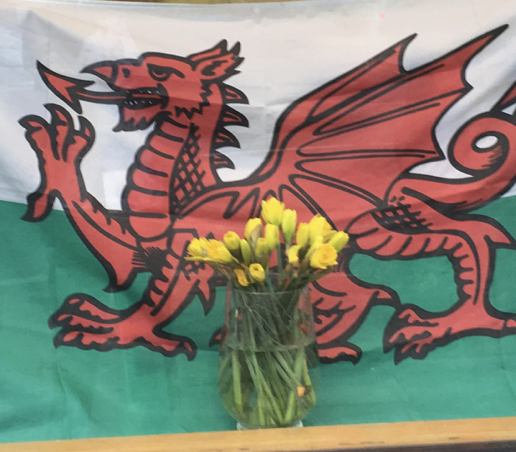 Hapus Dydd Gwyl Dewi! Happy St David's Day!