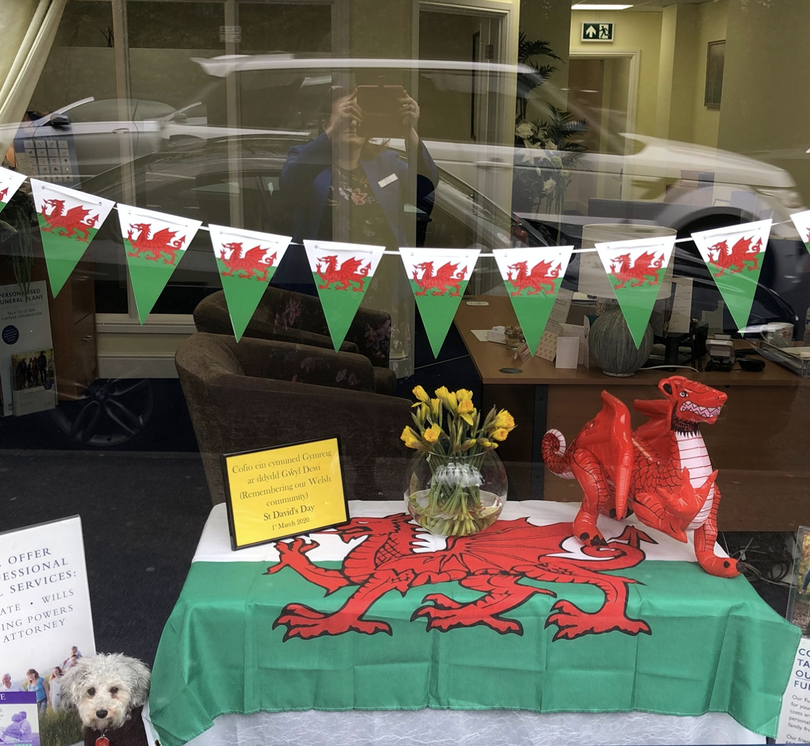 Happy St David's Day from Dotty the Therapy Dog!
